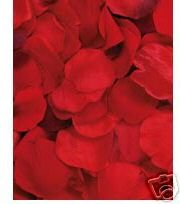 Red Silk Rose Petals - Christmas, Wedding Flowers, Confetti