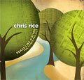The Christmas Song (Chestnu... - Chris Rice