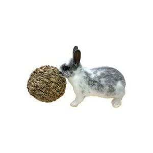 Click to buy Rabbit Toy: Peter's Woven Grass Play Ball from Amazon!