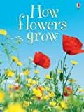 How Flowers Grow (Beginners)