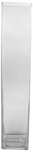 Wgv Clear Tall Square Block Glass Vase, 4 By 28-inch By Wgv