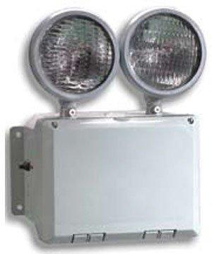 nfpa 101 emergency lighting pdf