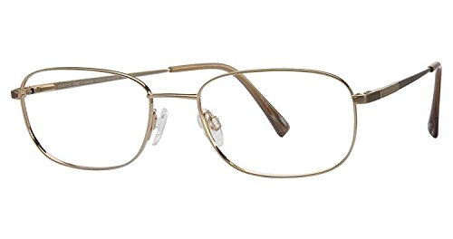 Charmant Eyeglasses TI8172 TI/8172 GP GEP Full Rim Optical Frame 53mm (Charmant Eyeglass Frames compare prices)