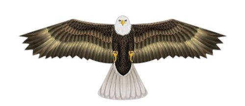 X Kites Birds of Prey Nylon Eagle Kite-48 Inch Wingspan