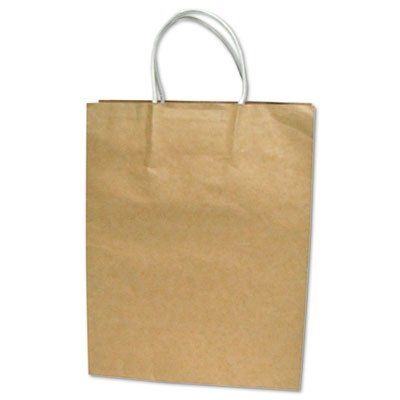 Premium Large Brown Paper Shopping Bag 50/Box by COSCO