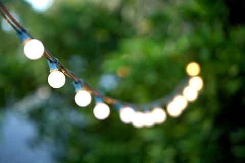 Frosted Globe String Lights Set of 25 G40 FROSTED Bulbs Indoor / Outdoor