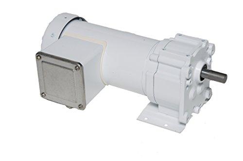 Leeson Parallel Shaft Washdown 1/6 Hp, 30 Rpm 230V Electric Gear Motor # M1145145