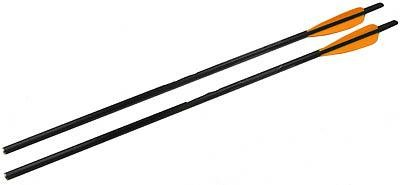 Barnett 22-Inch Headhunter Arrows (Bulk 48) (Barnett Quad Avi compare prices)