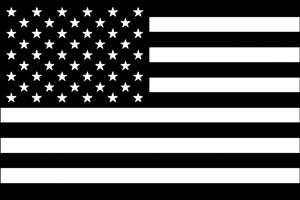 CandD Visionary CDX Black and Whit American Flag Sticker