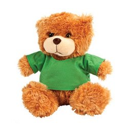 PLUSH BEAR WITH GREEN TSHIRT