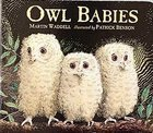 Owl Babies Board Book