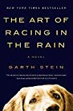 Art of Racing in the Rain (Paperback, 2009)