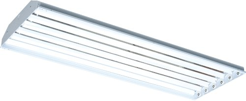 RAB Lighting RB6T8 RBay 6 by 32-Watt T8 Linear FL High Bay with Y Hook, White