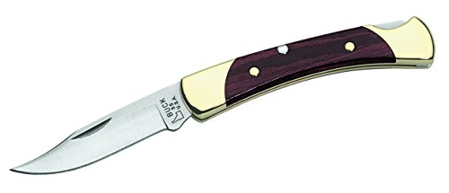Buck Knives 0055BRS Folding Hunter Knife