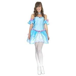 Teen Rebel Toons Cinderella Costume
