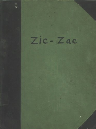 zic-zac-the-crocodile-bird