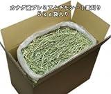 【年末おまけ牧草付】牧草市場カナダ産プレミアムチモシー1番刈り牧草5kg (モルモット・うさぎの健康牧草) [その他]