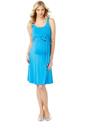 Rosie Pope Maternity Best Dress