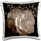 WhiteOak Art Designs Fairy Prints - Beauty. Graphic Art Designs of a Fairy representing the beauty in Nature. - 16x16 inch Pillow Case