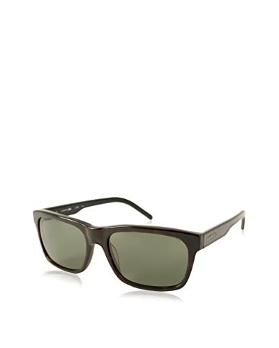 Lacoste Men's L703S Sunglasses, Tortoise/Green