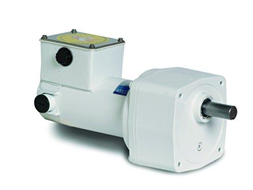 Leeson Parallel Shaft Washdown 1/4 Hp, 250 Rpm 90Vdc Electric Gear Motor # M1125271