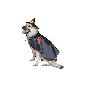 Witch Pet Halloween Costume Size Small