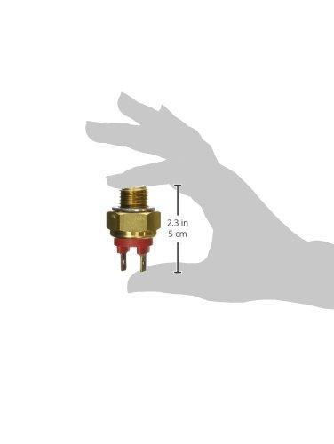 Fuel Parts RFS3016 Temperatur-Sensor (Kuhler und Luft)