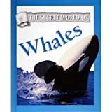 img - for Whales (Secret World of...) book / textbook / text book