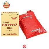 ハグルマ JAS標準 トマトケチャップ3kg袋パック×4袋入