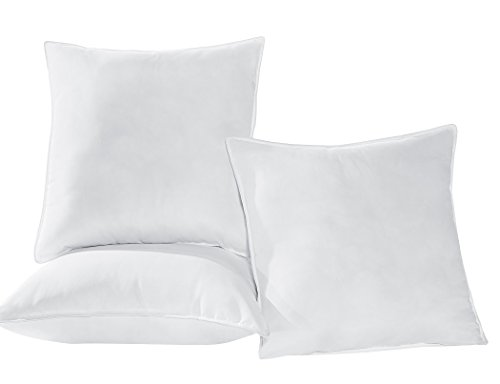 Great Deal! Chezmoi Collection Extra Filled Down Alternative Euro Pillow Cushion Insert 26x26 (set...