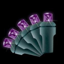 5Mm 70L Led Christmas Lights (Purple)