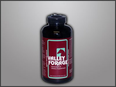 Valley Sports Nutrition