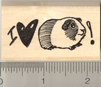 I love my Guinea Pig Rubber Stamp