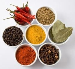 Curry Spice Kit - 10 Authentic Spices Refill + A FREE Packet of Fenugreek Seeds from Jalpur
