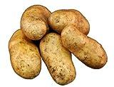 【国産】ジャガイモ・じゃがいも「メークイン」1kg