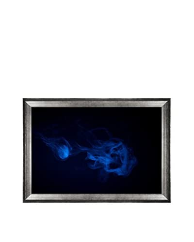 "Steve Gracy ""Smoked Fish"" Framed Limited-Edition Photograph on Canvas"