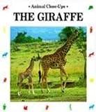img - for Giraffe: A Living Tower (Animal Close-Ups) book / textbook / text book