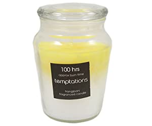 Temptations Layered Candle In Glass Jar - Frangipan by PinkWebShop