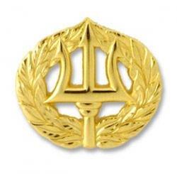 Command Ashore Badge Gold Finish - Regulation
