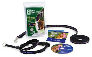 Gentle Leader Deluxe Head Collar and Leash, Medium, Baubles/Deep Purple