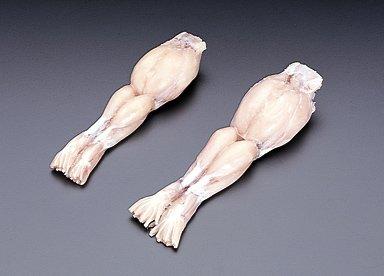 カエル肉モモ1kg
