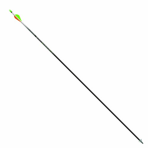 Easton 819388 Pack of 6 Axis Arrow with 2-Inch Vane, Black