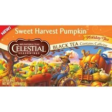 Blk Tea, Sweet Harvst Pumpkn, 20 bag (pack of 