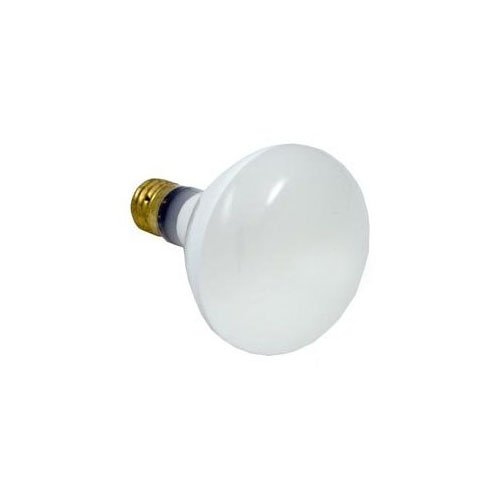hayward spx0542z4 r 40 bulb replacement for hayward underwater lights. Black Bedroom Furniture Sets. Home Design Ideas
