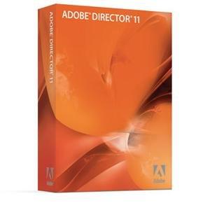 Director 11