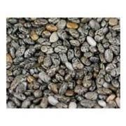 Bulk Seeds, Chia Seeds, Og, Black, 25/lb