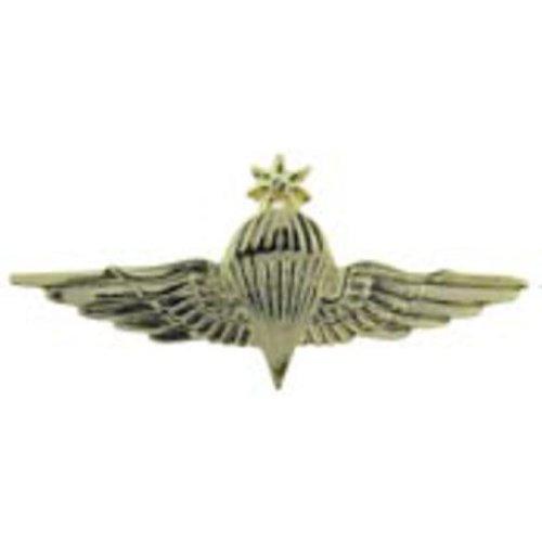 Jordan Senior Jump Wings Pin 3 1/8