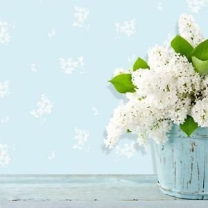 Coloroll Forget Me Not Wallpaper - Duck Egg by New A-Brend