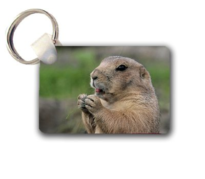 Prairie Dog Keychain Key Chain Great Gift Idea