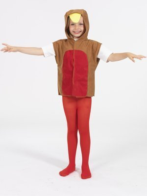Robin Red Breast T-shirt Style Costume for Kids